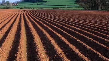 земля джи почва